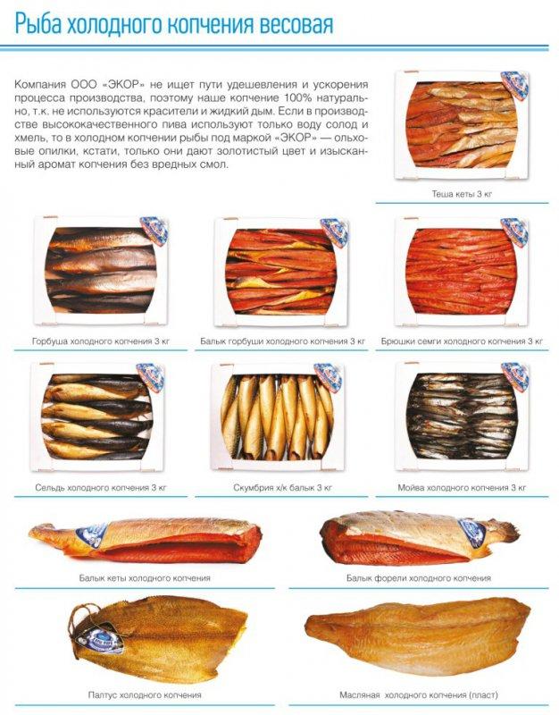 Рецепты копчения рыбы в домашних условиях холодного копчения